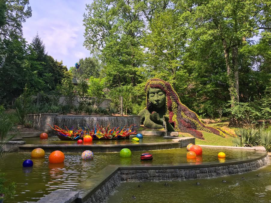 Chihuly in the garden at the atlanta botanical garden Atlanta botanical gardens promo code 2016