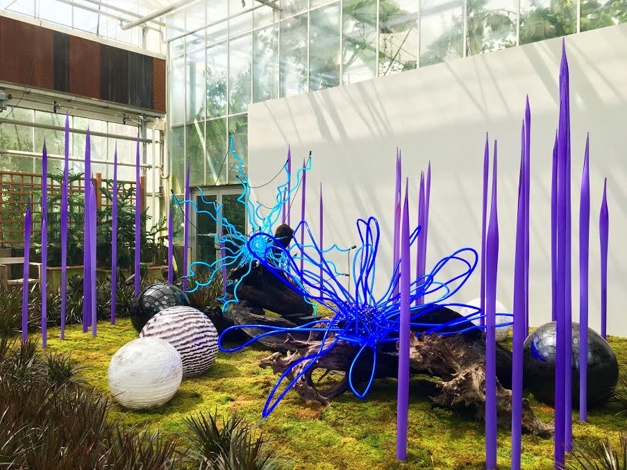 Chihuly In The Garden At The Atlanta Botanical Garden Atl Bucket List